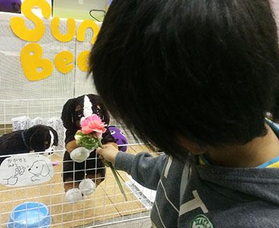 花をかぐと尻尾ふる犬(においセンサー)